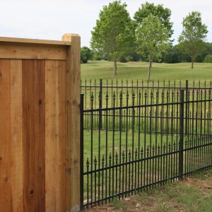 Iron Fence Example Short